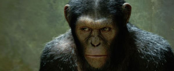 Rise of the Planet of the Apes Rises on Blu-ray