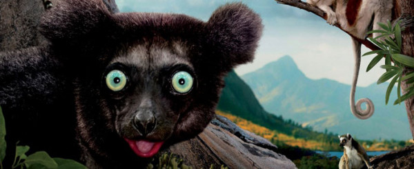 A Not-So-Fuzzy Review of 'Island of Lemurs'