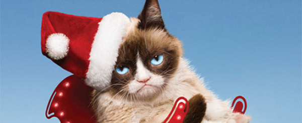 Grumpy Cat Reviews 'Worst Christmas Ever'