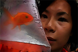 Year of the Fish movie picture