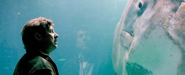 Review: Romance Surfaces in 'The Sunfish'