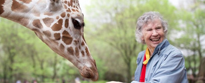 SIFF 2019 Review: 'The Woman Who Loves Giraffes'