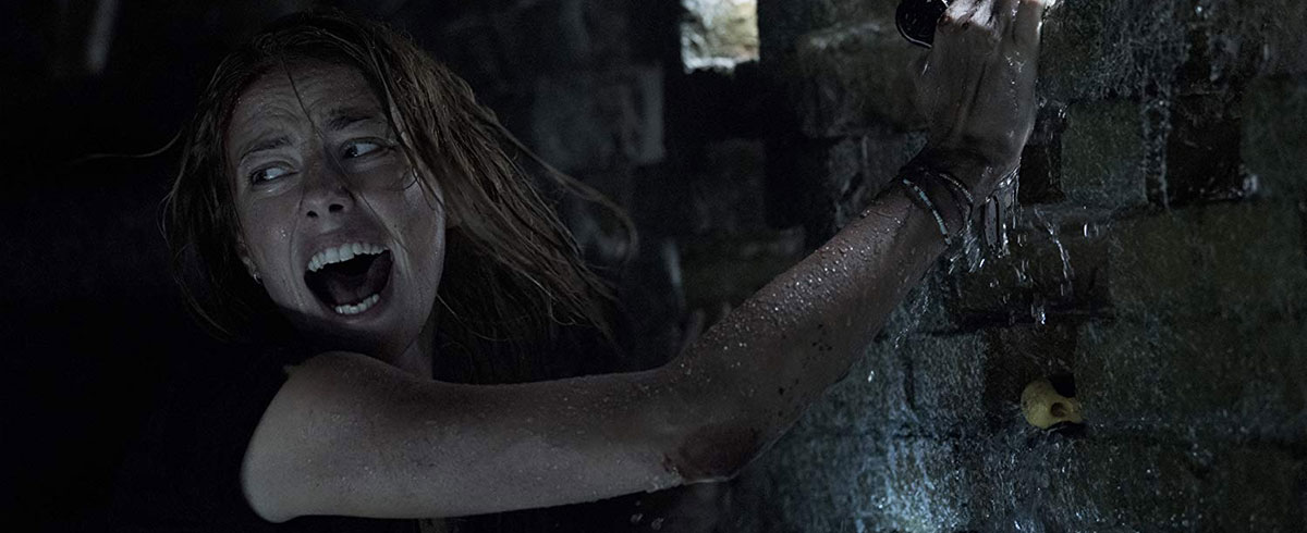 Now on Blu-ray, 'Crawl' Bites but Not Hard Enough