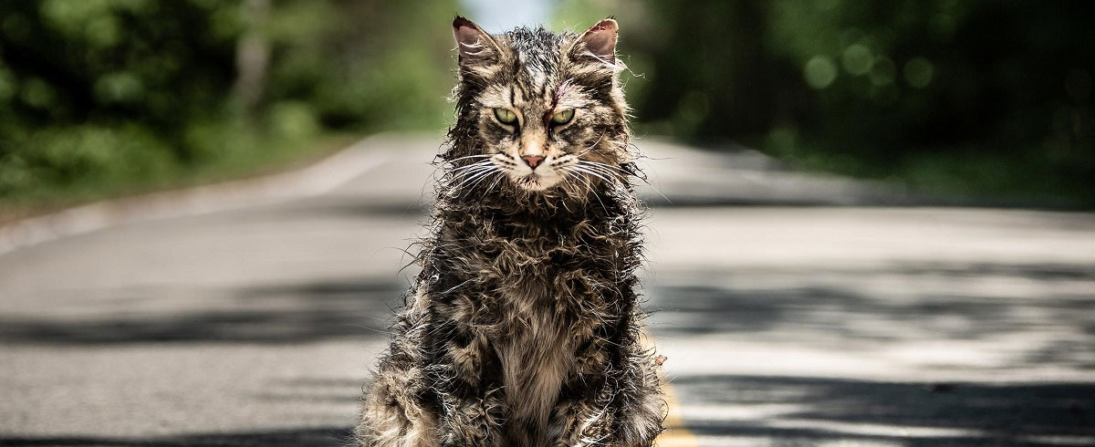 Watch the Creepy New 'Pet Sematary' Trailer