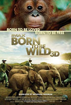 Born to be Wild 3D movie poster