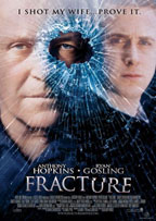 Fracture preview