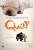 Quill: The Life of A Guide Dog preview