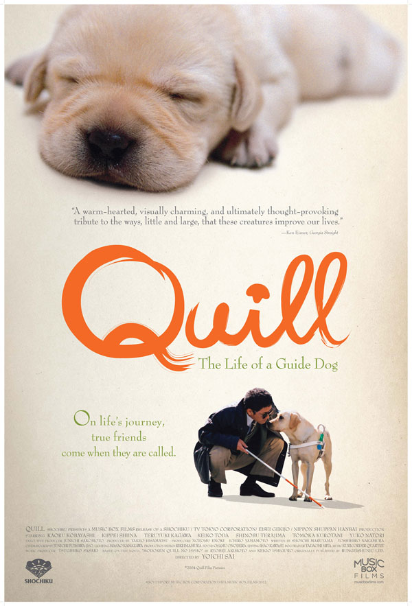Quill: The Life of A Guide Dog Image 1